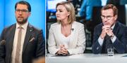 Kan Jimmie Åkesson, Ebba Busch Thor och Ulf Kristersson bilda ett nytt politiskt block? TT
