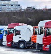 Lastbilar vid Scania i Södertälje. Arkivbild.  Jonas Ekströmer/TT / TT NYHETSBYRÅN