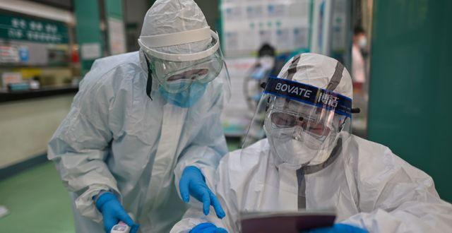 Medicinsk personal i Wuhan. HECTOR RETAMAL / TT NYHETSBYRÅN