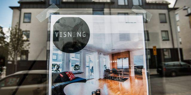 Arkivbild. Tomas Oneborg / SvD / TT / TT NYHETSBYRÅN