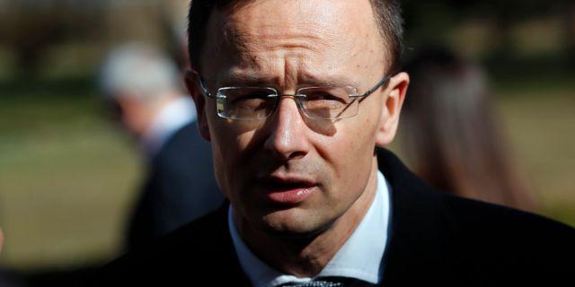 Ungerns utrikesminister Peter Szijjarto.  Darko Vojinovic / TT NYHETSBYRÅN