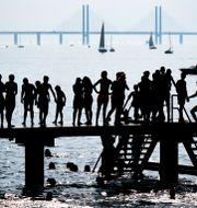 Badare och båtar på rad vid Scaniabadets bryggor i Malmö. Johan Nilsson/TT / TT NYHETSBYRÅN