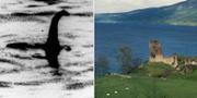Bild som sägs visa odjuret/Loch Ness-sjön i Skottland. TT