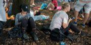 Festivaldeltagare tar igen sig i skuggan i Chicagos Grant Park. Erin Hooley / TT / NTB Scanpix