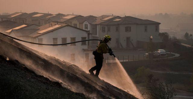 Brandmannen Tylor Gilbert bekämpar Silveradobranden i staden Irvine i Kalifornien. Jae C. Hong / TT NYHETSBYRÅN