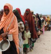 Flera länder i Afrika är hårt drabbade av svältkrisen. Arkivbild. Farah Abdi Warsameh / TT NYHETSBYRÅN/ NTB Scanpix