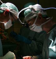 Läkemedlet imlifidase används inför transplantationer.  JACK MIKRUT