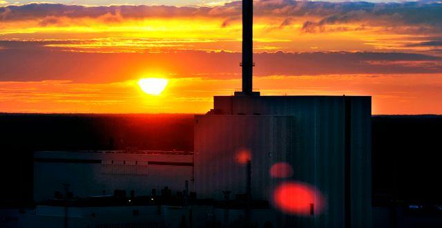 Kärnkraftverket i Forsmark. Tomas Oneborg / SvD / TT / TT NYHETSBYRÅN