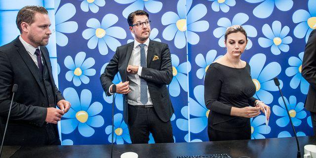 Gruppledare Mattias Karlsson, partiledare Jimmie Åkesson och Paula Bieler. Tomas Oneborg/SvD/TT / TT NYHETSBYRÅN