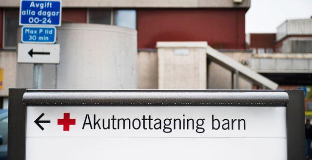 Arkivbild.  Emil Langvad/TT / TT NYHETSBYRÅN