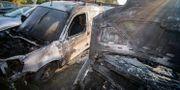 Utbrända bilar på Hammarbacksvägen i Oxie på fredagen. Johan Nilsson/TT / TT NYHETSBYRÅN