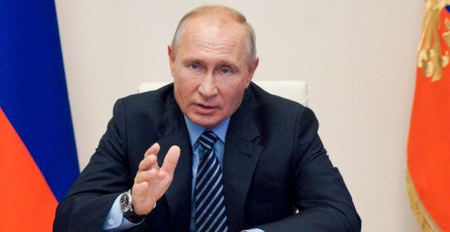 Vladimir Putin. Alexei Druzhinin / TT NYHETSBYRÅN