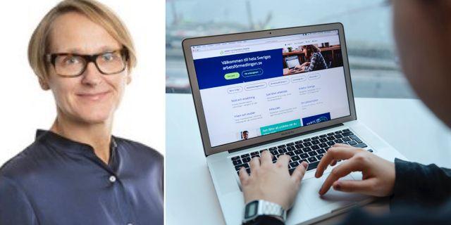 Annika Sundén, Arbetsförmedlingens analyschef.  AMS och TT