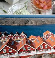 Sotenäs kommun respektive genrebilder. TT/Shutterstock