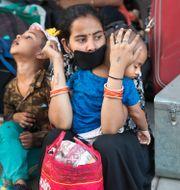 Arkivbild: En migrantarbetare i Indien väntar på att få gå ombord på ett tåg Manish Swarup / TT NYHETSBYRÅN