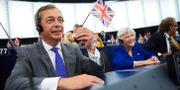 Brexitpartiets Nigel Farage i EU-parlamentet. Fredrik Persson/TT / TT NYHETSBYRÅN