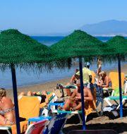 Arkivbild. Turister solar på solstolar under parasoll på en badstrand i Malaga i Spanien.  Tina Remius Strömberg/TT / TT NYHETSBYRÅN