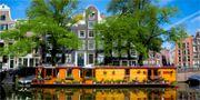 Det finns omkring 2 400 husbåtar i Amsterdam. De flesta ligger på den största kanalen Amstel. Istock