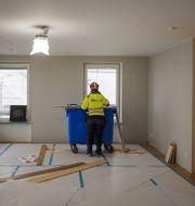 Lärling på ett bygge. Stina Stjernkvist/TT / TT NYHETSBYRÅN