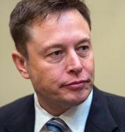 Elon Musk. Shutterstock