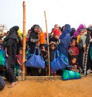 Rohingyer vid en flyktingförläggning i Bangladesh Manish Swarup / TT / NTB Scanpix