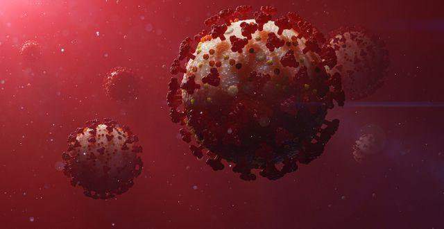 Coronavirus.  Stefan Hörberg/Rithuset AB / TT NYHETSBYRÅN