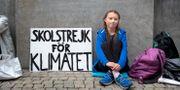 Greta Thunberg. Jessica Gow/TT NYHETSBYRÅN / TT NYHETSBYRÅN