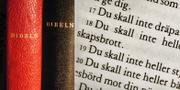Bibeln. TT