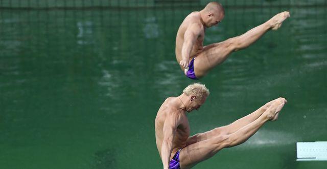 Arkivbild från simhopp i Rio. TT