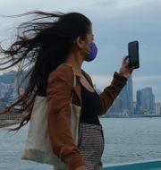 En kvinna tar en bild framför Victoria Harbour, när tyfonen Kompasu närmar sig Hongkong.  Vincent Yu / TT NYHETSBYRÅN