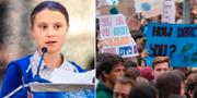 Greta Thunberg vid ett tal i New York. TT