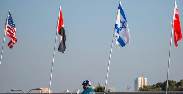 Flaggor för USA, Förenade arabemiraten, Israel och Bahrain vid en israelisk bro. Ariel Schalit / TT NYHETSBYRÅN