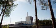 Forsmarks kärnkraftverk. Arkivbild. FREDRIK SANDBERG / TT / TT NYHETSBYRÅN