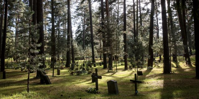 Mannen begravdes i Skogskyrkogården i Stockholm. Helena Landstedt / TT / TT NYHETSBYRÅN