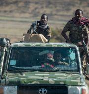 Soldater i Tigray.  Ben Curtis / TT NYHETSBYRÅN