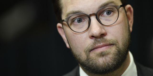Jimmie Åkesson. Stina Stjernkvist/TT / TT NYHETSBYRÅN