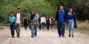 Arkivbild (14 mars). Familjer passerar Rio Grande, floden som skiljer Mexiko och USA åt. Eric Gay / TT NYHETSBYRÅN