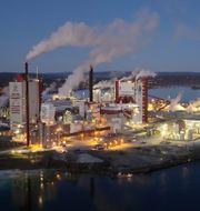 Östrands massafabrik. Pressfoto: SCA/Torbjörn Bergkvist