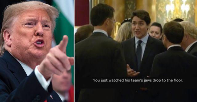 Trump/skärmbild av Trudeaus skojvideo. TT