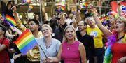 Finansminister Magdalena Andersson (S), här i Stockholms Prideparad.  TT