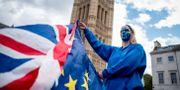 Protest mot brexit framför Victoria Tower i London. Arkivbild. TOLGA AKMEN / AFP