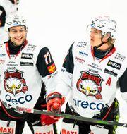 Malmö Redhawks Pathrik Westerholm och Emil Sylvegård. Illustrationsbild. SUVAD MRKONJIC / BILDBYRÅN