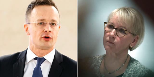 Polens president protesterar mot val av utrikesminister