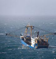 Fiskebåt i Engelska kanalen. Gareth Fuller / TT NYHETSBYRÅN
