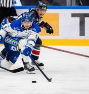 Bild från matchen.  DANIEL ERIKSSON / BILDBYRÅN