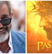 Mel Gibson. TT