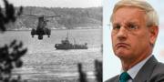 Carl Bildt, tidigare M-ledare. TT