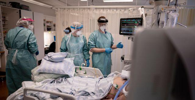 Arkivbild. En patient vårdas på iva i Göteborg.  Björn Larsson Rosvall /TT / TT NYHETSBYRÅN