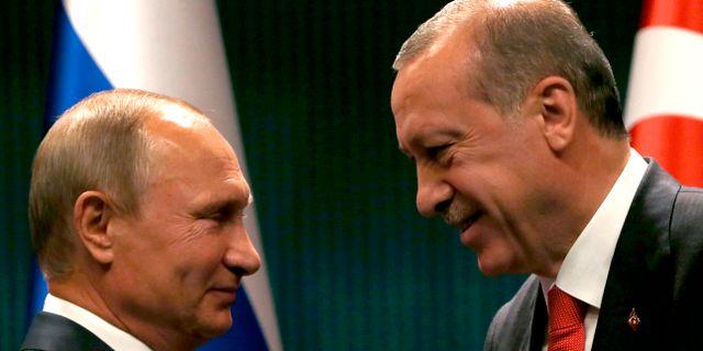 Vladimir Putin och Recep Tayyip Erdogan.  Burhan Ozbilici / TT / NTB Scanpix