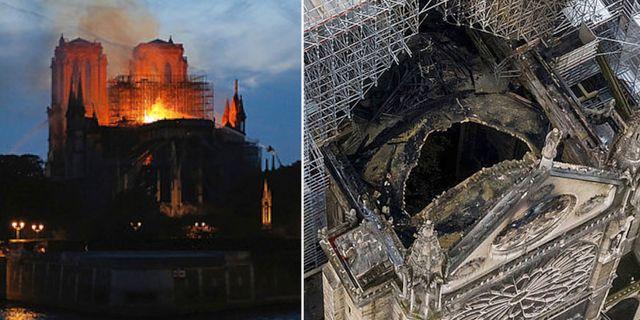 Notre Dame.  TT.